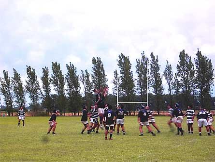 Rugby - Los Cuervos de Bell Ville